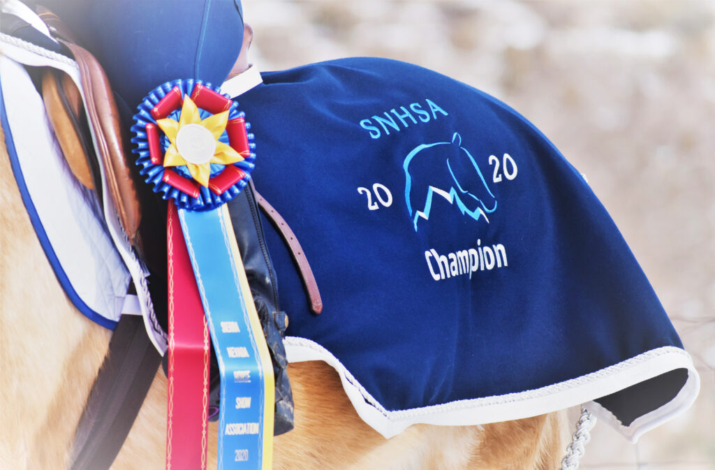 image of horse with year-end award