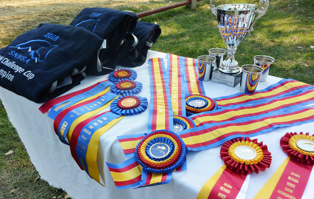 2018 SNHSA Challenge Cup trophy, ribbons, cups and coolers