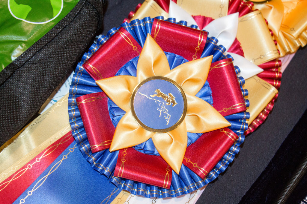 SNHSA Year-End ribbon image